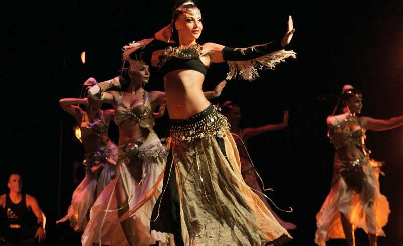 ベリーダンスとトルコ料理を楽しむイスタンブール ナイトツアー